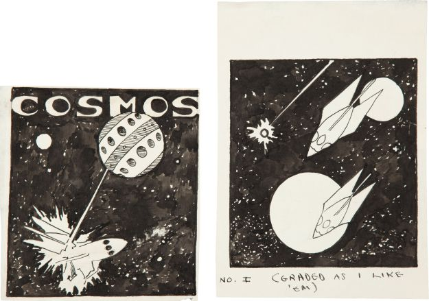 Bok-Cosmos-large